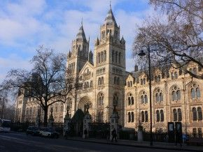 museo-historia-natural-londres01